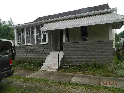 Proctorville Single Family Home For Sale: 219 Wilgus Street