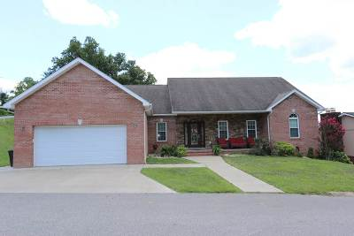 South Point Single Family Home For Sale: 208 Orchard Drive