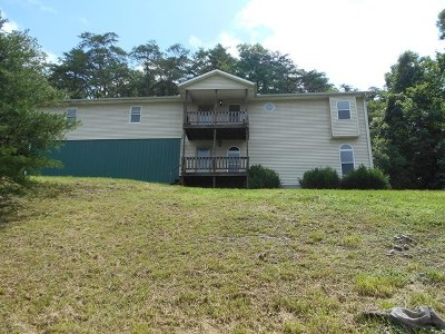 Chesapeake Single Family Home For Sale: 814 State Route 378