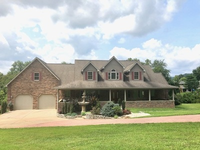 Chesapeake Single Family Home For Sale: 167 Park Drive