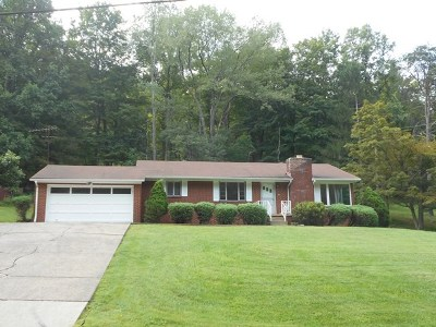 Chesapeake Single Family Home For Sale: 16572 State Route 243