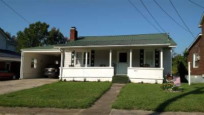 Ironton Single Family Home For Sale: 865 County Road 24