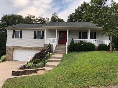 Cross Lanes Single Family Home For Sale: 5311 Edds Lane