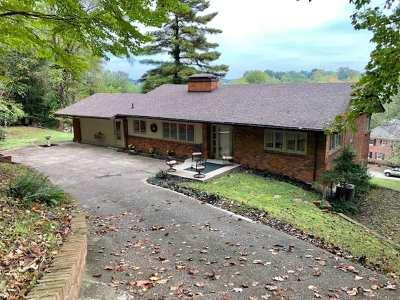 Huntington Single Family Home For Sale: 1503 Ritter Park Drive