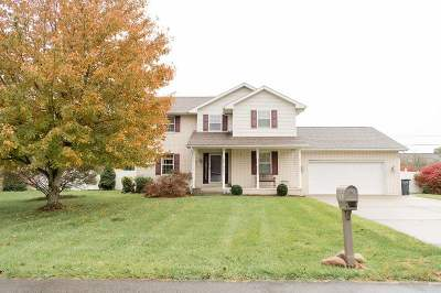 Proctorville Single Family Home For Sale: 303 Township Road 1533