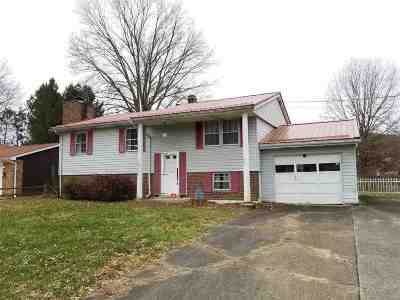 Barboursville Single Family Home For Sale: 217 Bartow Drive
