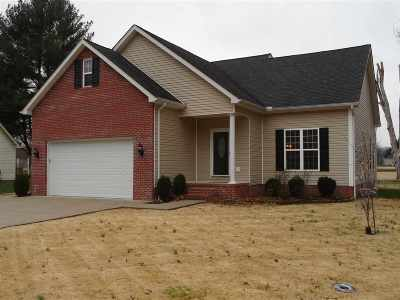 Barboursville Single Family Home For Sale: 828 Big Bend Road