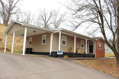 Kenova Single Family Home For Sale: 1981 Pinto Lane