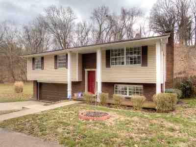 Huntington WV Single Family Home For Sale: $123,500