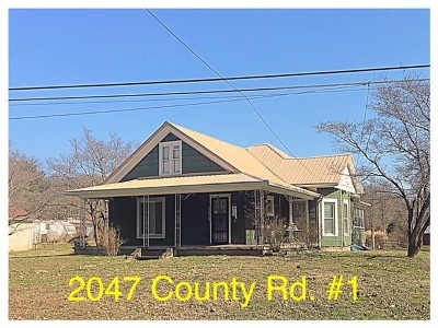South Point Single Family Home For Sale: 2047 County Road 1