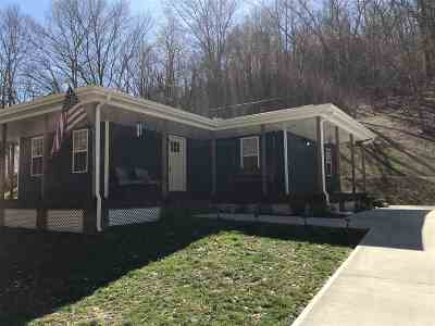 Ironton Single Family Home For Sale: 95 Yellow Branch