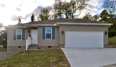 Chesapeake Single Family Home For Sale: 22 Platinum Drive