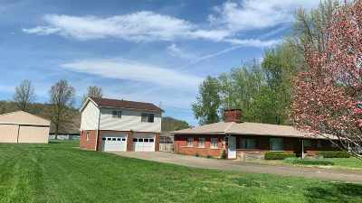 Proctorville Single Family Home For Sale: 461 Township Road 1135