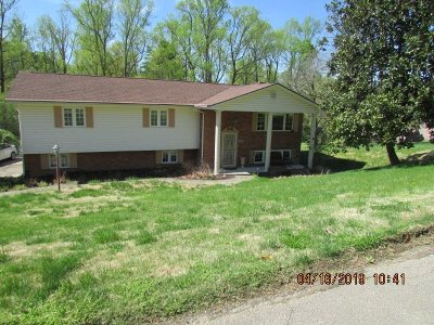 Kenova Single Family Home For Sale: 868 Pine Hill Estates