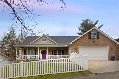 Huntington WV Single Family Home For Sale: $285,000