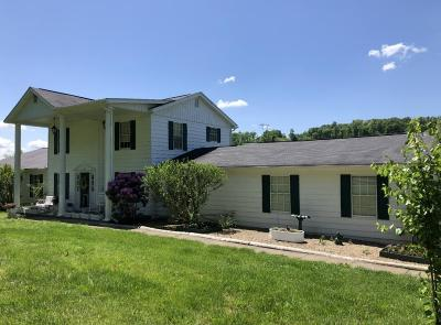 Ashland Single Family Home For Sale: 8207 Grandview Lake Road