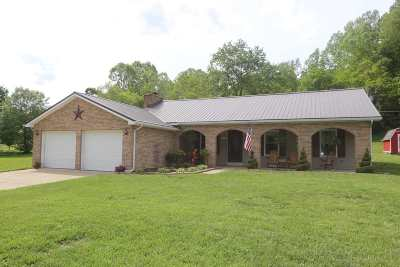 South Point Single Family Home For Sale: 1877 County Road 18