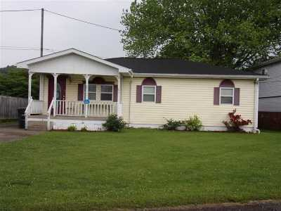 Proctorville Single Family Home For Sale: 39 Twp. Rd. 1141
