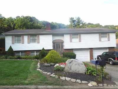 Ironton Single Family Home For Sale: 1219 Penobscot Trail