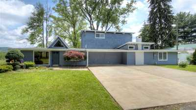 South Point Single Family Home For Sale: 191 Private Drive 8358