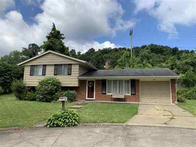 Barboursville Single Family Home For Sale: 118 Setzer Drive