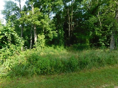 Residential Lots & Land For Sale: Pvt Dr 100 Lot 3