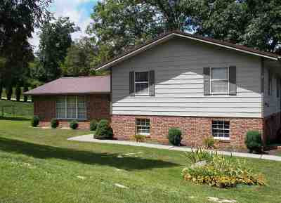 Ironton Single Family Home For Sale: 180 Private Road 50