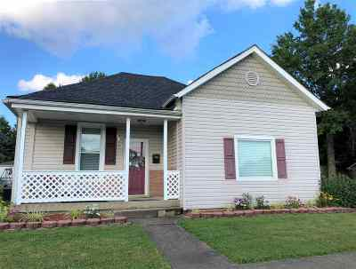 Ironton Single Family Home For Sale: 1421 S 9th Street