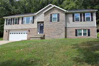Barboursville Single Family Home For Sale: 25 Williamsburg Drive