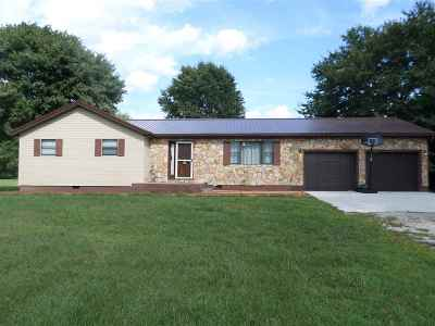 Proctorville Single Family Home For Sale: 13638 State Rt 7