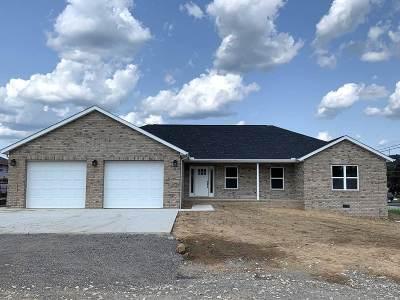 Proctorville Single Family Home For Sale: 20 Quinn Drive