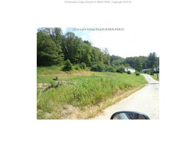 Chapmanville Residential Lots & Land For Sale: Chafin Branch Road