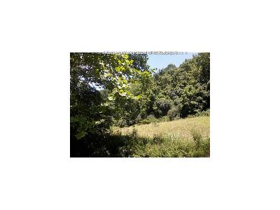 Nitro Residential Lots & Land For Sale: Armors Crk Pioneer Dr