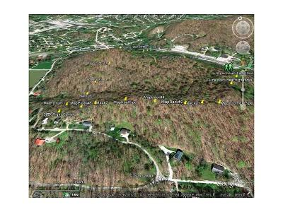 Cross Lanes Residential Lots & Land For Sale: W Washington Street