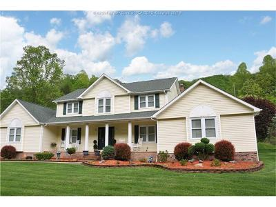 Chapmanville Single Family Home For Sale: 34 Hubert Hill Road