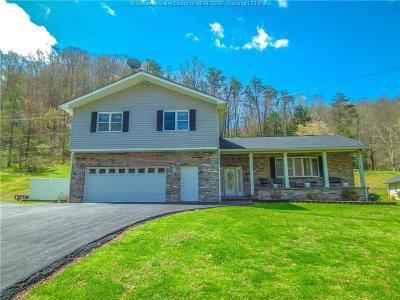 Chapmanville Single Family Home For Sale: 1312 Garretts Fork