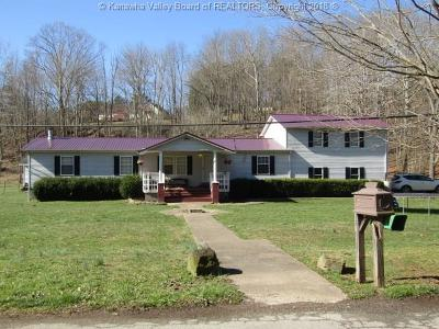 Ripley Single Family Home For Sale: 198 Homer Smith Road