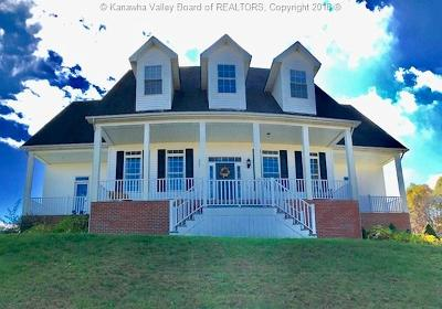 Winfield Single Family Home For Sale: 3539 Blue Lick Road