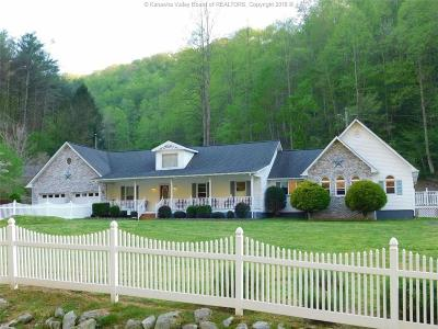 Chapmanville Single Family Home For Sale: 156 Wheatley Branch Road