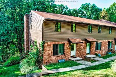 Dunbar Single Family Home For Sale: 787 Roxalana Hills Road