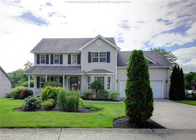 Scott Depot Single Family Home For Sale: 93 Dominic Drive