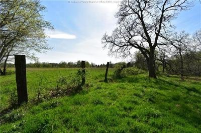 Ripley Residential Lots & Land For Sale: Ripley Road