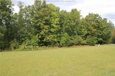 Ripley Residential Lots & Land For Sale: Ridgeview Drive