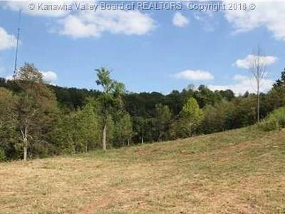Ripley Residential Lots & Land For Sale: Old Stone Ridge Road