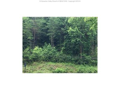 Hurricane Residential Lots & Land For Sale: 1096 Tackett Branch Road