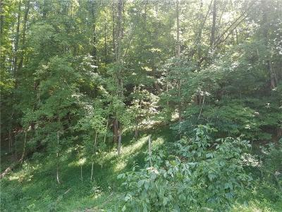 Chapmanville Residential Lots & Land For Sale: Caney Branch