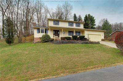 Scott Depot Single Family Home For Sale: 111 Teays Meadows