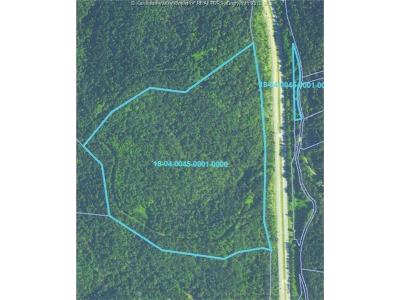 Ripley Residential Lots & Land For Sale: Rt 21