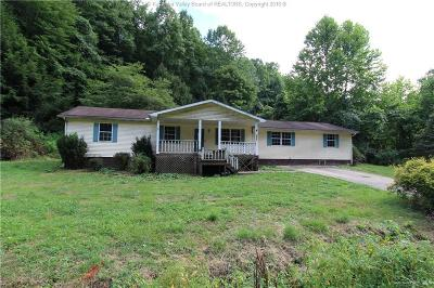Chapmanville Single Family Home For Sale: 1619 North Fork Road