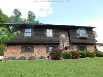 Chapmanville Single Family Home For Sale: 35 Lake Branch Road